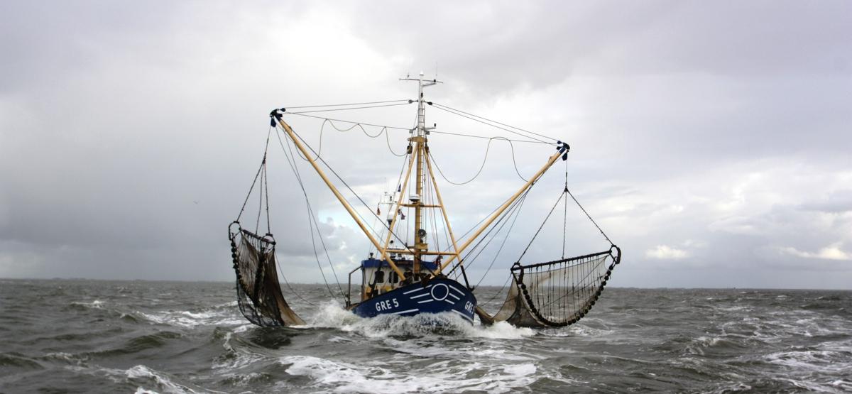 Fischereibetrieb Rolf Groenewold, Greetsiel