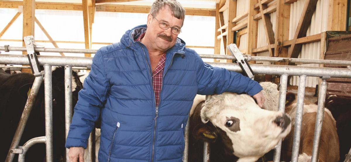 Milchviehwirtschaft Heinz Thur Dahlem